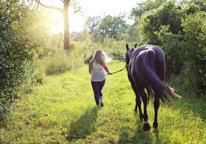 woman-with-horse-2631173_1920